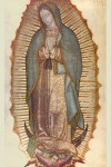 Click to See Our Lady of Guadalupe