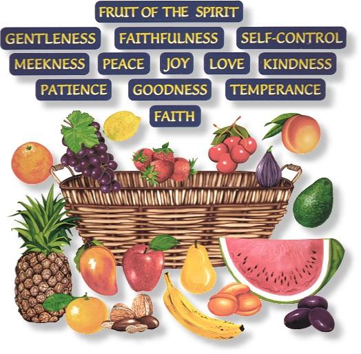12 fruits